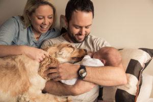 newborn-baby-photographer-beaumaris-mentone-bayside-49