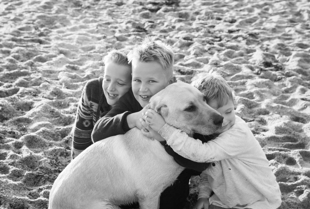 family-portrait-beaumaris-beach-35