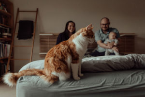 newborn-family-photography-home-relaxed-53