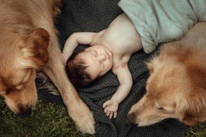 newborn-family-photographer-beaumaris-mentone-13